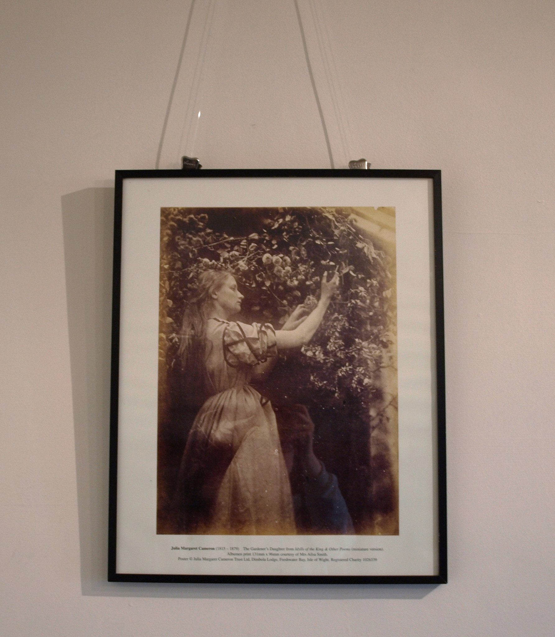 The Gardener's Daughter Poster By Julia Margaret Cameron