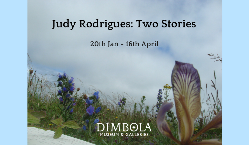 Judy Rodrigues: Two Stories
